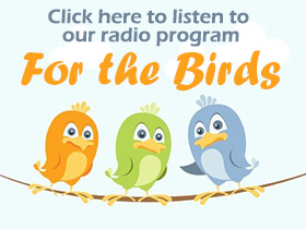 Listen to For the Birds, our radio program as heard on WJFF.