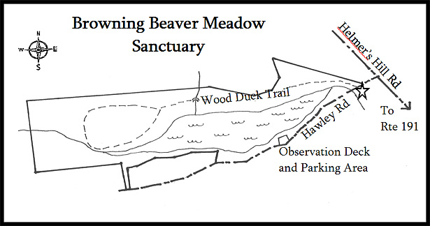 Browning Beaver Meadow Sanctuary