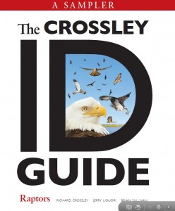 Crossley ID Guide: Raptors