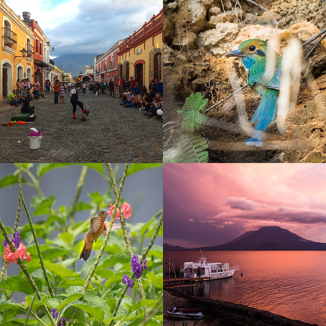 Guatemala! Clockwise from upper left: Antigua Guatemala, Blue-throated Motmot, Sunset over Lake Atitlan, Cinnamon Hummingbird (Chris Fischer Photography)